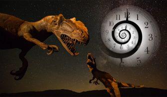 Dinozorların Zamanında Bir Yıl