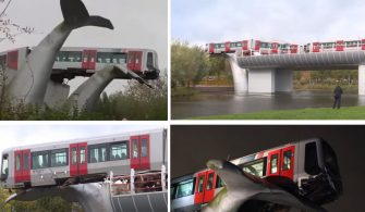 Hollanda ilginç tren kazası balina kuyruk